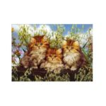 Three Little Cats Print Draw Diamond Drawing