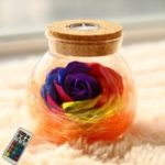 BRELONG LED Colorful Rose Vase Remote Control Glowing Glass Bottles Decoration