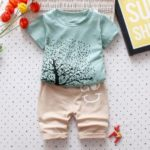 DS-02 Bamboo Cotton Summer Boy Short Sleeve Two-Piece Set