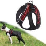 Reflective No Pull Choke Free Pet Harness for Small Medium Dogs Breathable Padded Harness Vest