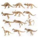 Dino Fossil Dinosaur Model Educational Toy Gift plastic Dinosaur Skull Home Decoration 12pcs/set