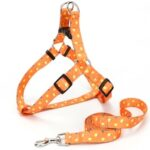 Lemon Pattern Thermal Transfer Polyester buckle triangle Collar Traction Rope Pet Supplies