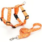 Lemon Pattern Thermal Transfer Polyester Buckle I-shaped Collar Traction Rope Pet Supplies